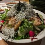 111798304 - 湘南釜揚げしらすと地野菜のサラダ