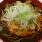 そば・うどん・ラーメン はやて 盛岡南口店 - 野菜かき揚げ天そば(390円)