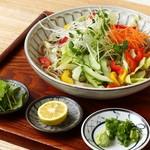 蕎麦おとや - 料理写真:せんぎり野菜ひやかけ