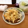 加賀 - 料理写真:冷しかき揚げうどん460円