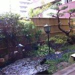 山本屋食堂 - ちょっとした中庭もあり