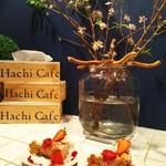 Hachi Cafe - シャレとる