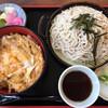 日乃出庵 - 料理写真:ざるそばとカツ丼セット900円です