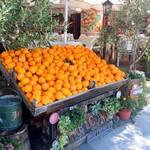 112364016 - 店先に並ぶオレンジが魅力w