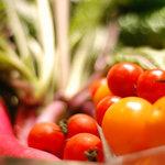 ガイーナ - 無農薬野菜のバーニャカウダ