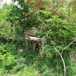 112675132 - トトロの森の中のよう