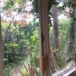 112675168 - 席から眺めた庭