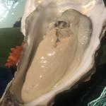 蔵元佳肴 いづみ橋 - 雄勝の牡蠣。蒸し。でかい。方言かな? 乳芽濃い! 確かに(^◇^)