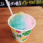 アストロピッツァ - かき氷 (カップ)シロップかけ放題¥200