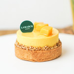 ラマルク - 料理写真:シロゴマンゴー