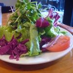 113026044 - 野菜サラダ