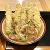 Agodashiudon - 料理写真:肉ごぼう天うどん