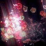 炭火割烹 蔓ききょう - ぱっと光って咲いた〜♪ 花火を見ていた〜♪