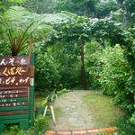 Cafe ichara - 入口。