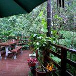 Cafe ichara - 雨のテラス席。