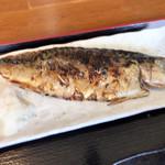炭火焼イタリアン 海串 ブラーチェ - 文化サバの炭火焼き定食