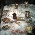 11337246 - 新鮮な魚たち