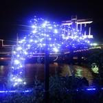 トータス - ライトアップ