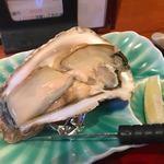 ひわさ屋 - 岩ガキは今が旬、真牡蠣に比べ、大きさも厚みもあり、見た目で明らかに分かるほどのボリュームです。