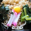 そば屋 きしち - 料理写真:冷やしたぬき アップ