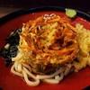 そばの神田 東一屋 - 料理写真:野菜かき揚げうどん