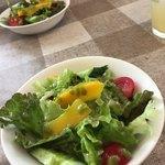 ポトフ - サラダ バジルソース