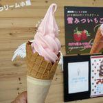 ソフトクリーム小屋 - 料理写真:雪みついちごソフトクリーム(450円)