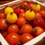 113919809 - 2種のトマトのモザイク