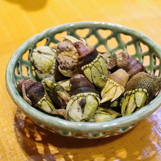 ほづみ亭 - 料理写真:せい貝