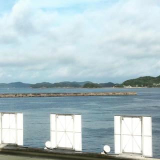 魚市場もったいない食堂 - 海が見えます