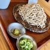 蕎麦専門店 愉庵 - 料理写真:蕎麦粉十割の田舎そば