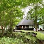 114137360 - 広葉樹の庭
