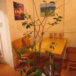 洋食屋キッチンKAZU - グァバの木