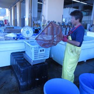 江戸前穴子確保の為小柴漁港他市場廻りは欠かさず行っております