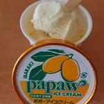 鵜来来の湯 十王 - ポポーアイスクリーム 120ml_270円