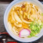 天霧うどん - 料理写真:かき揚げうどん450円