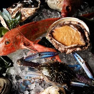 水揚げ漁港から直送の天然鮮魚