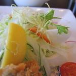 オイスタン - サラダちゃん