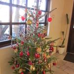 ヌーベルパティスリー  ともなが - クリスマスツリー