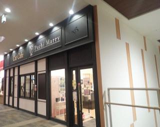 猫カフェ ぷちまりー ラソラ札幌店 - ラソラ札幌の2Fミャ