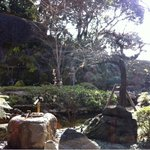 11460155 - テーブルから見えるお庭