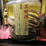 鷹流 - ハブ・まむし・コブラとは・・恐ろしぃ~しかも480円