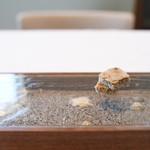 pesceco - 昆布のサブレ