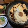 Nokiya - 料理写真:とり天梅おろしぶっかけ 冷  大盛