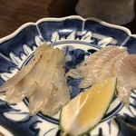 Saketosakanafuji - 刺身