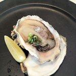 メゾン・ド・スリジェ - 三重県産 生牡蠣