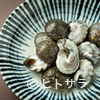 三代目とも - 料理写真:貝の旨みがたまらない『九十九里より ながらみ貝の塩茹で』