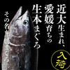 魚盛 コレド室町テラス