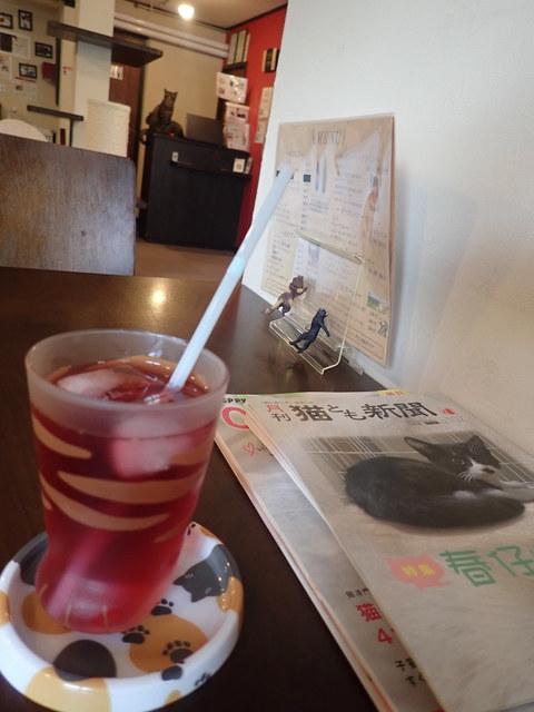 猫カフェ ミューキーズ - ブルーベリーカシス ティガー「おいしいニャか?」