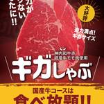 【国産牛コース限定】ギガが足りないあなたへ!!【ギガしゃぶ】神内和牛赤経産牛モモ肉使用